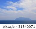 風景 三宅島 海の写真 31340071