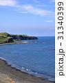 風景 三宅島 海岸の写真 31340399