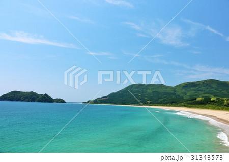 宮崎県 青空と青い海 31343573