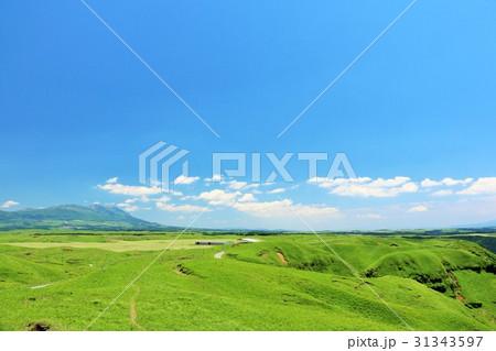 熊本県 青空と新緑の高原 31343597