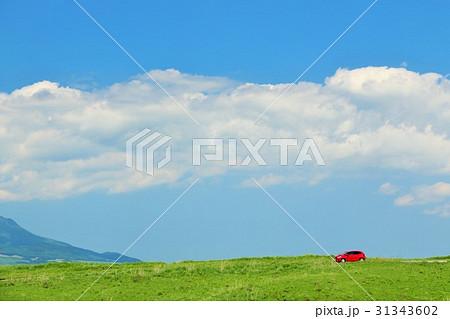 熊本県 高原を走る赤い車 31343602