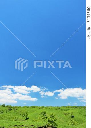 青空の大自然 31343604