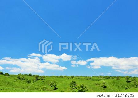 青空の大自然 31343605