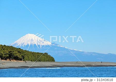 日本の景勝地 三保の松原から 31343610