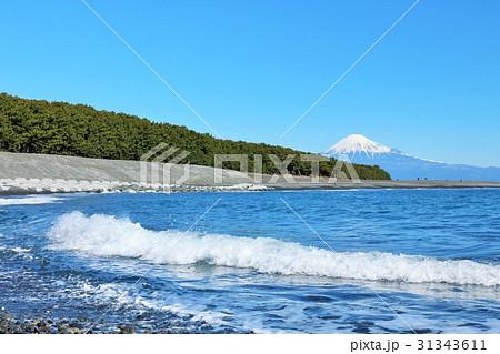 静岡県 三保の松原からの海と富士山 31343611