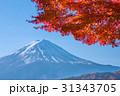 紅葉 富士山 山の写真 31343705