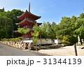 井山宝福寺 宝福寺 三重塔の写真 31344139