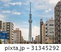 東京都 スカイツリー 日本の写真 31345292