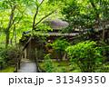 京都 嵯峨野 祇王寺 31349350