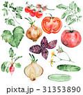 ベジタブル 野菜 トマトのイラスト 31353890