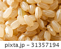 玄米 米 穀物の写真 31357194