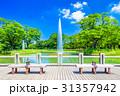 代々木公園 公園 夏の写真 31357942