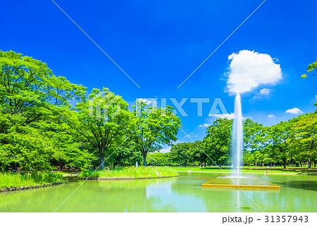 東京 夏の代々木公園 31357943