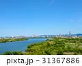 淀川 31367886