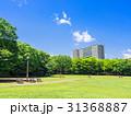 住宅街 公園 青空の写真 31368887
