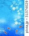 背景 金魚 波紋のイラスト 31374029