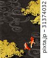 金魚 紅葉 和風のイラスト 31374032