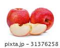 農業 りんご アップルの写真 31376258