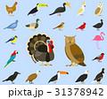 鳥 イラスト イラストレーションのイラスト 31378942