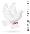 鳩 ハト ホワイトのイラスト 31379014