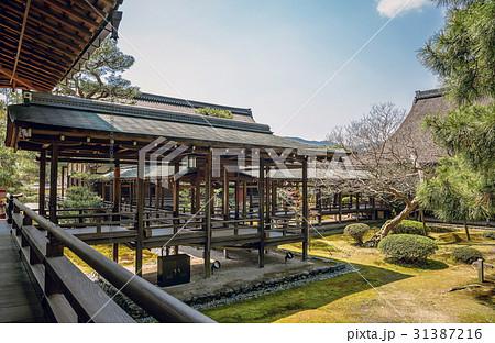 美しい回廊と庭園風景 31387216