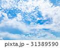 高積雲 羊雲 曇りの写真 31389590