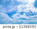 高積雲 羊雲 曇りの写真 31389593
