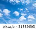 高積雲 羊雲 曇りの写真 31389603