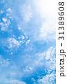 高積雲 羊雲 曇りの写真 31389608