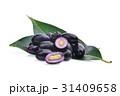 jambolan plum or Java plum isolated on white  31409658