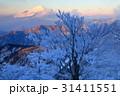 富士山 樹氷 朝焼けの写真 31411551