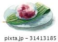 水まんじゅう 生菓子 甘味のイラスト 31413185