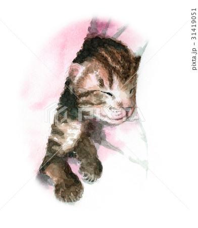 眠る子猫 31419051