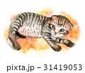 猫 子猫 動物のイラスト 31419053