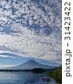 富士山 秋 雲の写真 31423422