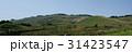 稲取 伊豆稲取 稲取細野高原の写真 31423547