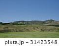 伊豆稲取 細野高原 三筋山の写真 31423548