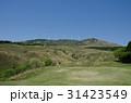 細野高原 三筋山 大草原の写真 31423549