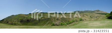 伊豆稲取の細野高原と三筋山  31423551