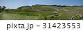 細野高原 三筋山 大草原の写真 31423553