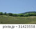 稲取 伊豆稲取 稲取細野高原の写真 31423558