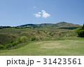 伊豆稲取 細野高原 三筋山の写真 31423561