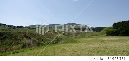伊豆稲取の細野高原と三筋山  31423571