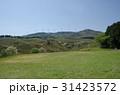 伊豆稲取 細野高原 三筋山の写真 31423572