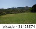 伊豆稲取 細野高原 三筋山の写真 31423574