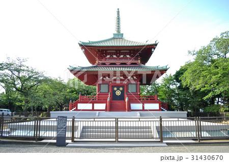 神奈川県東神奈川孝道山付近の写真 31430670