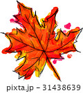 Watercolor Paint Of Palmate Maple Autumn Leaf 31438639