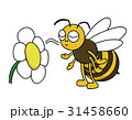 ミツバチが花の匂いを嗅ぐ 31458660