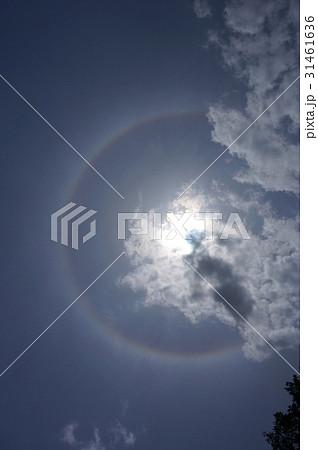 ハロ:日暈(太陽に薄雲がかかった際に周囲に虹色の光の輪が現れる大気光学現象) 31461636
