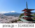 富士山 五重塔 桜の写真 31468368